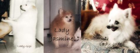 Lady Gigi - Lady Jasmine - Lady Jade