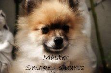Master Smokey Quartz