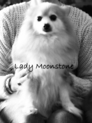 Memorial of Lady Moonstone