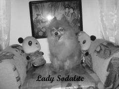 Memorial of Lady Sodalite