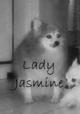 Memorial of Lady Jasmine