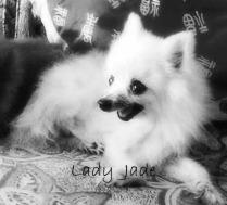 Memorial of Lady Jade