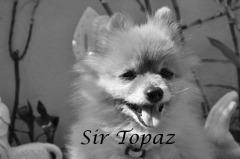 Memorial of Sir Topaz
