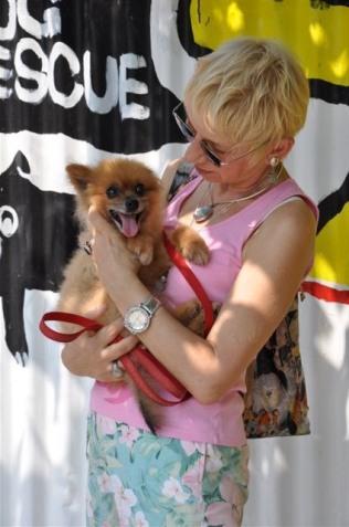 doggie photos RatOx years saved at CNY 044
